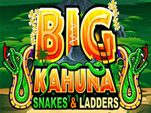 Big Kahuna Snakes And Ladders в казино Вулкан